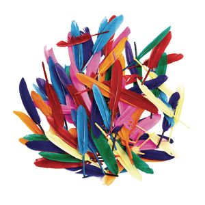 Colorations® Rainbow Duck Quill Feathers - 1 oz.