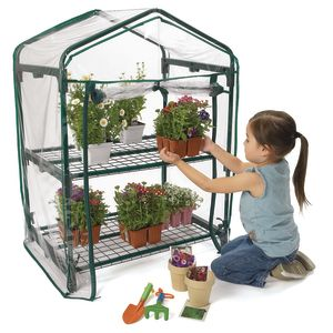 Two-Tiered Mini Greenhouse