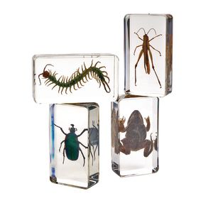 Excellerations® Acrylic Garden Friends - Set of 4