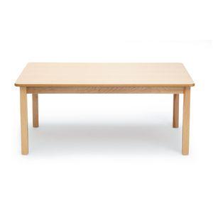 "24"" x 48"" Maple Laminate Table - 24""H"