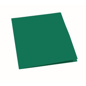 Plastic Pocket Folder, Green