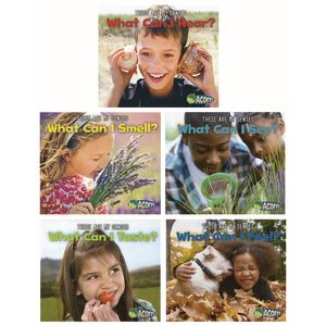 The Five Senses Paperback Books - 5 Titles