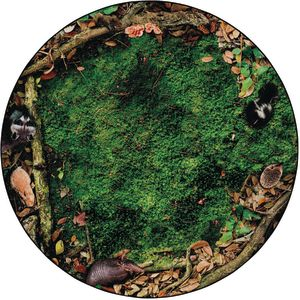 Forest Floor Carpet and Sit-Upons