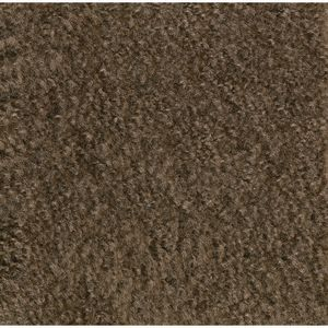 "Mt. St. Helens Carpet, Mocha - 8'4"" x 12' Rectangle"