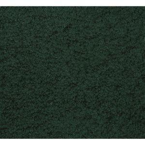 "Mt. St. Helens Emerald 8'4"" x 12' Rectangle Solid Carpet"