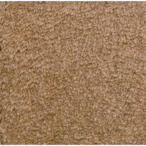 Mt. St. Helens Solid Carpet, Sahara - 6' X 9' Rectangle