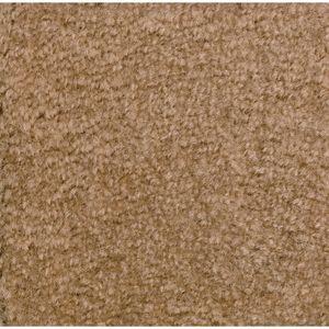 Mt. St. Helens Solid Carpet 6' X 9' - Sahara