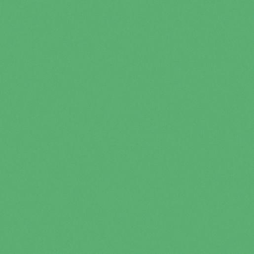 "Tru-Ray® Festive Green Sulphite Paper, 9"" x 12"" - 50 Sheets"