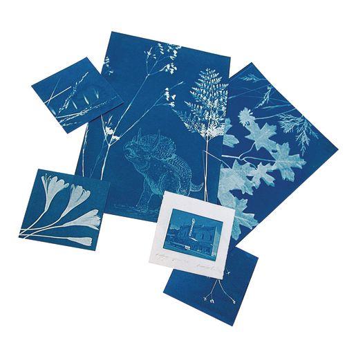 """Large Sunprint® Kit - 8"""" x 10"""""""