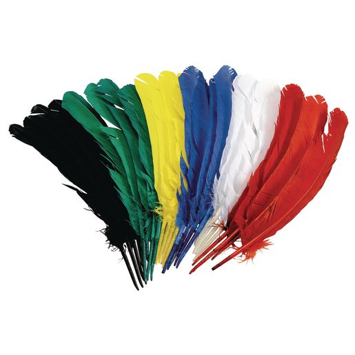 Image of Colorations Quill Feathers, 12 - Set of 24