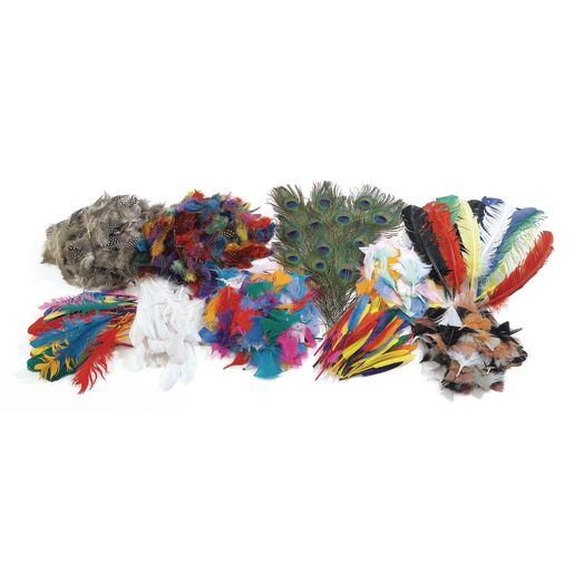 Colorations® Super Feather Classroom Pack