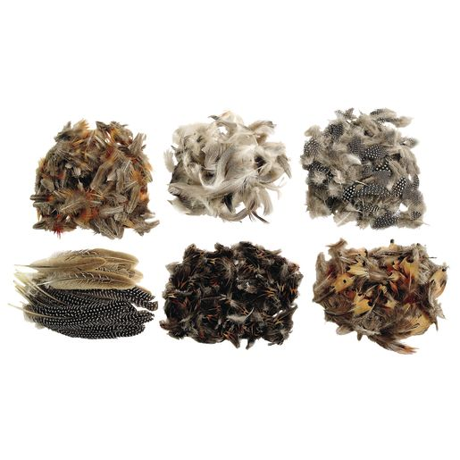 Image of Colorations Natural Feathers Classroom Pack