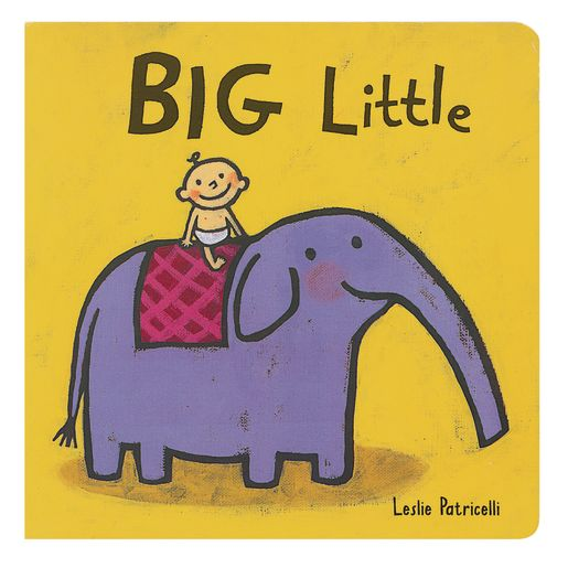Big Little Book