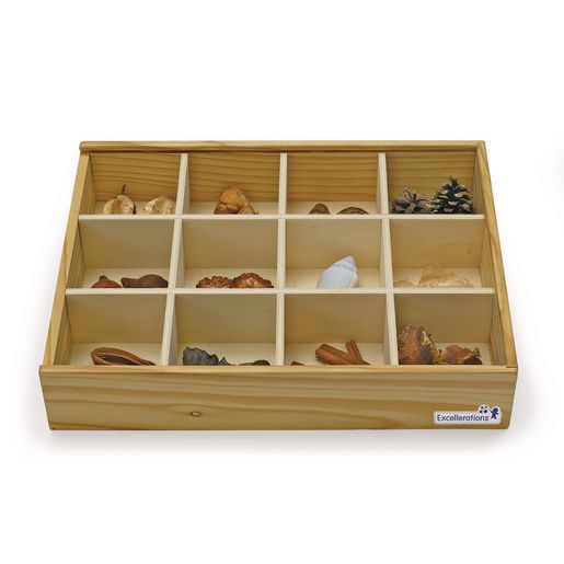 Excellerations® Wooden Specimen Kit