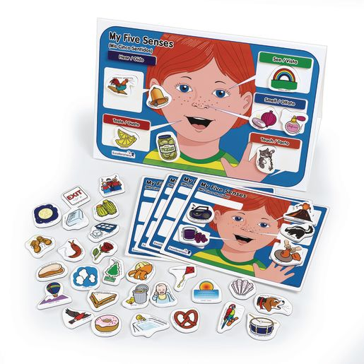 Image of Excellerations My 5 Senses Magnet Activity Set