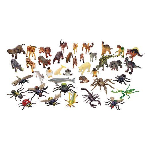 Classroom Starter Kit - Medium Animals
