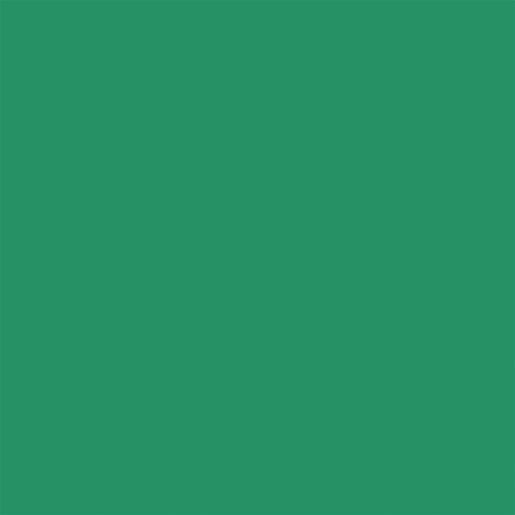 "Green 12""W x 18""L Riverside Construction Paper"