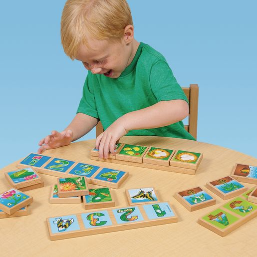 Environments® earlySTEM™ Life Cycles Sequencing Lotto