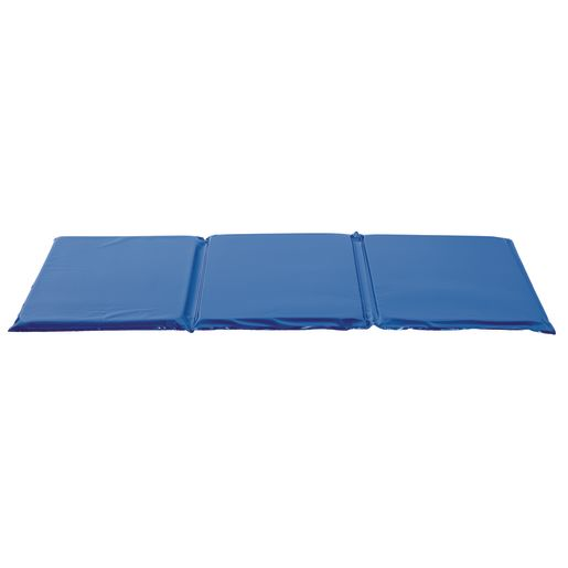 Image of 1 Germ-Free Two-Tone Blue Rest Mat