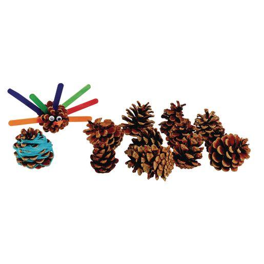 Medium Craft Pinecones 12 Pcs._0