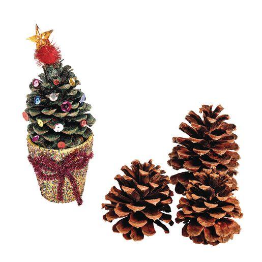 Medium Craft Pinecones 12 Pcs._1