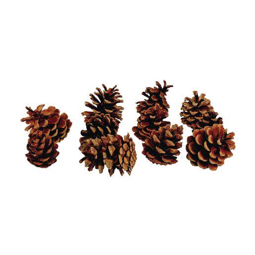 Medium Craft Pinecones 12 Pcs._2