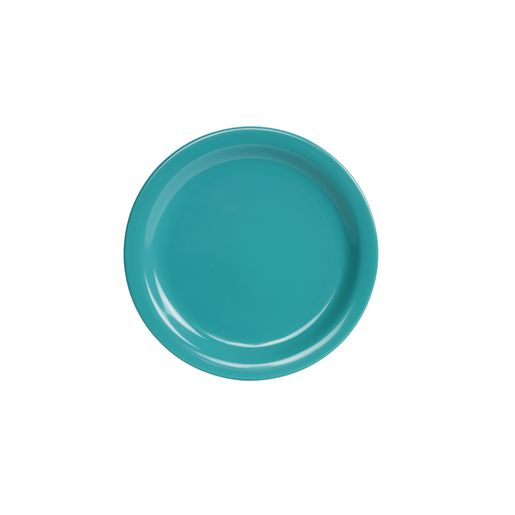 """Melamine 9"""" Turquoise Plates Set of 4"""