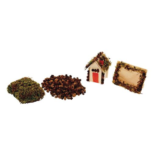Nature Collage Kit Moss and Mini Pinecones