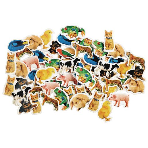 Image of Colorations Real Photo Animal Foam Stickers 250 Pieces