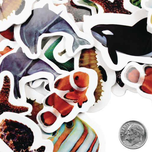 Colorations® Sea Life Photo Foam Stickers 250 Pieces