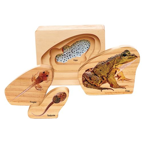 Environments® earlySTEM™ Life Cycles Nesting Puzzles Set of 3