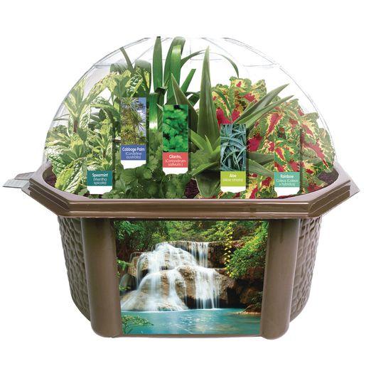 Sensory Eco-Biosphere