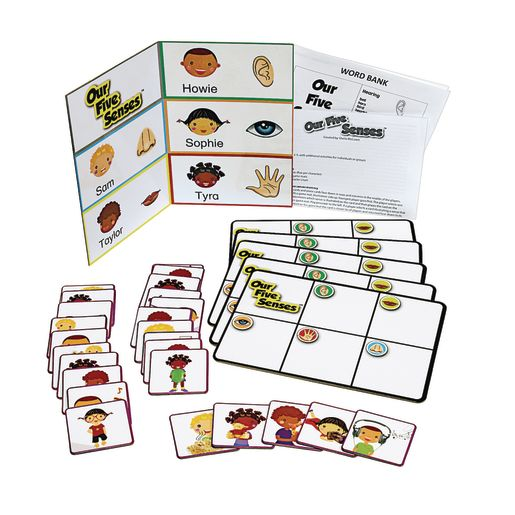 Image of Our Five Senses Game