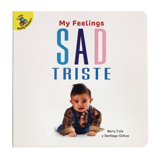 My Feelings Board Book Set of 5_5