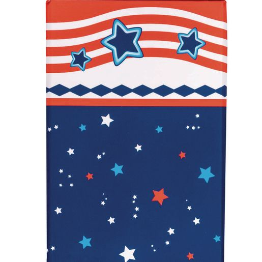 Star-Spangled Teacher Pencil Cup