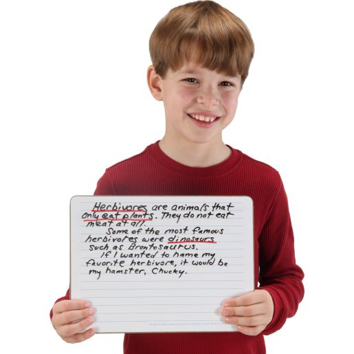 Two-Sided Intermediate-Lined Dry Erase Boards - Set Of 12