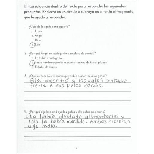 MORE Activities For Spanish Reading Comprehension Journal (MÁS Actividades de comprensión lectora) - 12 journals