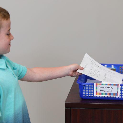 Classroom Paper Baskets - Rain Forest - Set Of 4