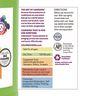 BioColor® Paint, Fluorescent Orange - 1 Gallon