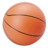 Official Size Basketball