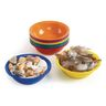 Science Activity Bowls - Set of 12