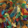 Colorations® Spotted Feathers - 1 oz.