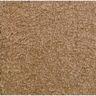 Mt. St. Helens Sahara 6' x 9' Rectangle Solid Carpet