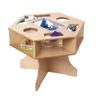 Excellerations® Science Activity Table