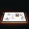 Mini Acrylic Bug Specimens Set of 6