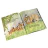 Rabbits and Raindrops Paperback Book