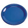 "Melamine 9"" Plate- Blue"