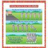 Math Skills And Strategies Flip Chart - Primary