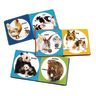 Poke-A-Dot Animal Families - Set of 3 Books